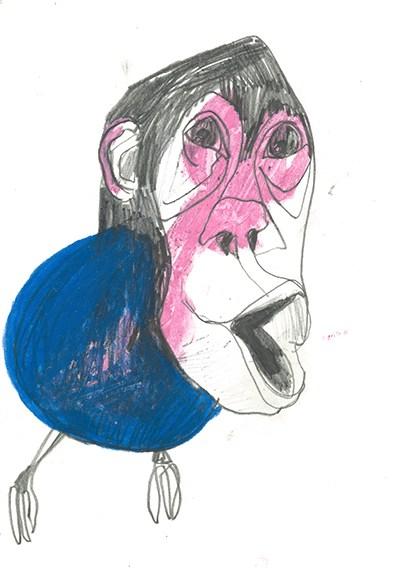 affenvogel-farbig.jpg