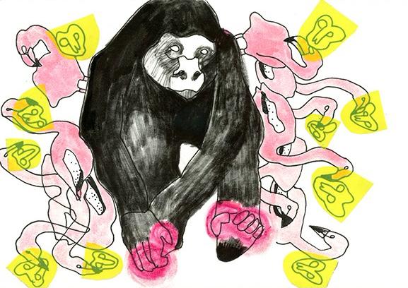Gorilla u Flamigos