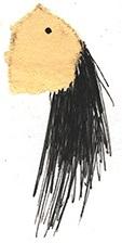 Haarkopf